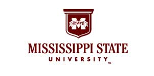 Mississippi MBA Admission Essays Editing