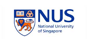 Nanyang business school essays 2013